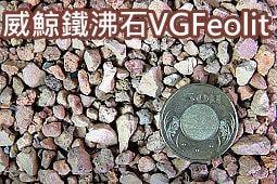[魚魚便利商店]~~威鯨鐵沸石VGFeolit_(1L裝_魚缸、爬蟲缸、沼澤缸)
