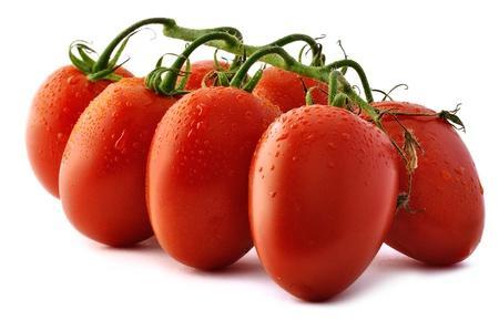 「羅馬番茄」的圖片搜尋結果