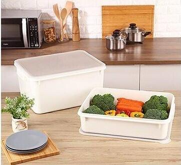 聯府 KEYWAY 零下30度C保鮮盒(18L) 冰箱盒//食材盒 KF-180