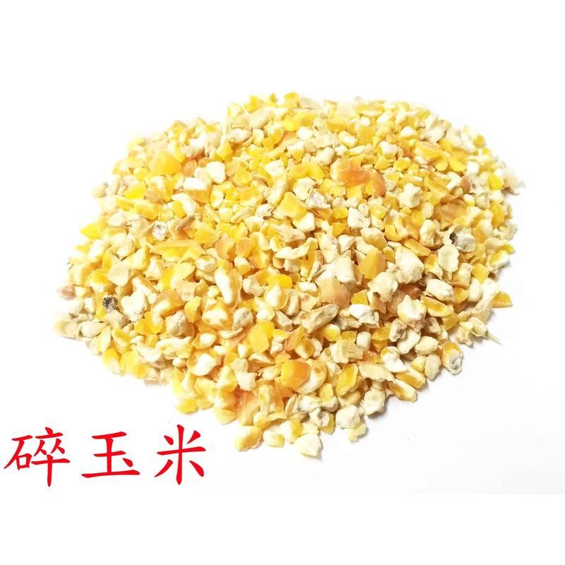 精選進口碎玉米/玉米碎/200克/600克可選/零嘴、主食/鸚鵡、鼠類、雞類、蜜袋鼯/倉鼠飼料/鳥飼料