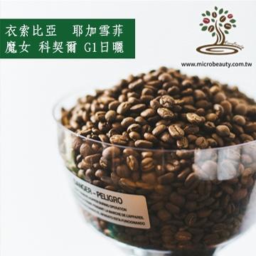[微美咖啡]-超值1磅650元,耶加雪菲 魔女 科契爾 G1日曬(衣索比亞)淺焙咖啡豆,500免運新鮮烘焙