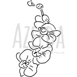 'Orchid' Wall Stencils / Templates (WS022247)