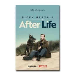 After Life Ricky Gervais Netflix Comedy TV Series Silk Canvas Poster 24x36 inch