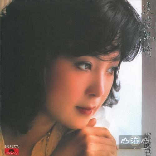 【黑膠唱片LP】淡淡幽情 (33轉 香港進口Polydor版) / 鄧麗君 Teresa Teng - 2427377A