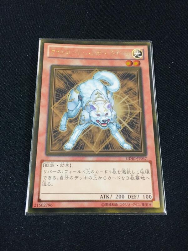 D1 <SC小舖> 遊戲王 GDB1-JP047 光道獵犬 (黃金版) 95-98分