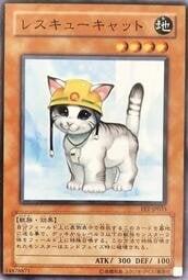 皮卡胖-龍FET-JP033 救援貓  (普卡) 正刻 95分