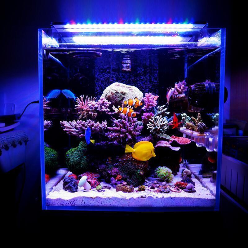 【新品上市】Chihiros千尋專業LED全光譜海水燈珊瑚燈水族燈水草魚缸海水缸燈