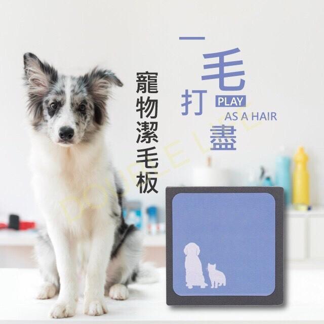 FB熱銷 寵物除毛磚 一毛打盡 寵物除毛刷 除毛貼 神奇除毛磚 韓國熱銷神奇除毛