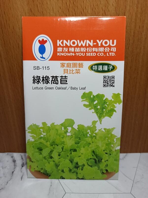 現貨【全館490免運】蒔花弄草~  SB-115 特選貝比菜種子 綠橡萵苣(特選種子)
