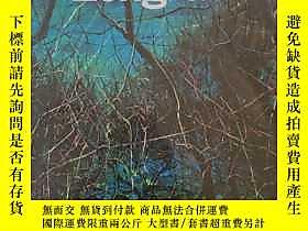 博民ZengFanzhi罕見曾梵志露天198250 曾梵志   出版2010