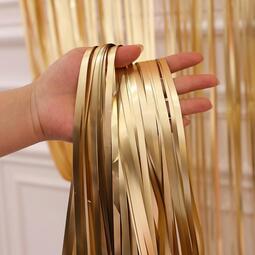 快速出貨 婚慶用品銀色金色鐳射啞光雨絲簾背景墻浪漫婚房流蘇生日派對裝飾墻布置