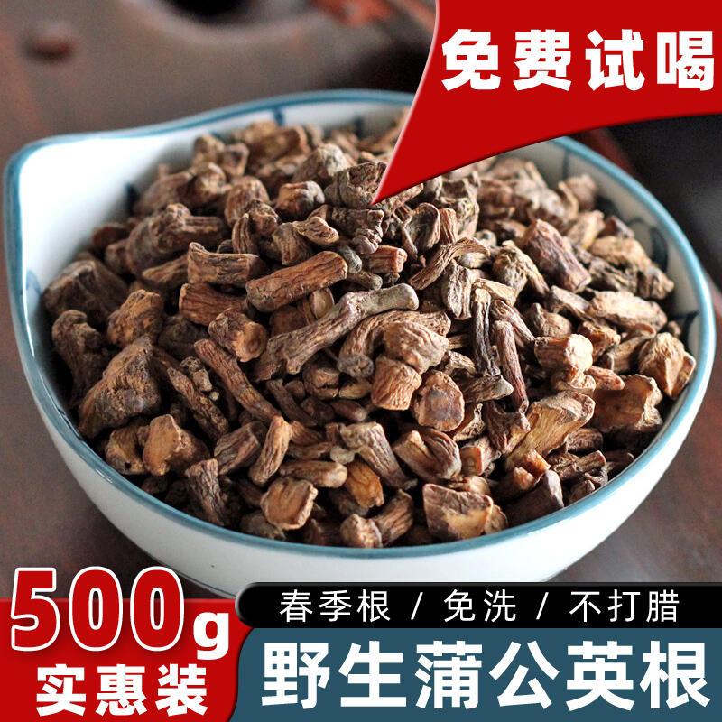 蒲公英根茶500g天然野生正品特級整根通乳腺長白山紅茶女蒲公英茶